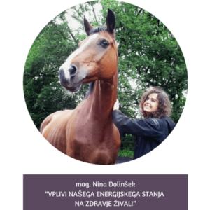 Nina Dolinsek REIKI predavatelj